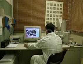Tecnico al computer all'interno del laboratorio chimico di Larderello