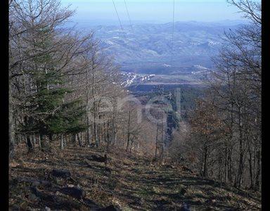 Traliccio MT