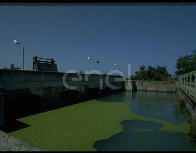 Vasca di depurazione