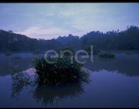 Paesaggio lacustre